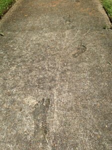 Footprints made in the sidewalk by a little boy nearly 40 years ago